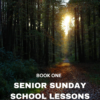 NEW Senior Sunday School Lessons Yr 1: (15+ Years)