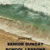NEW Senior Sunday School Lessons Yr 2: (15+ Years) book 2
